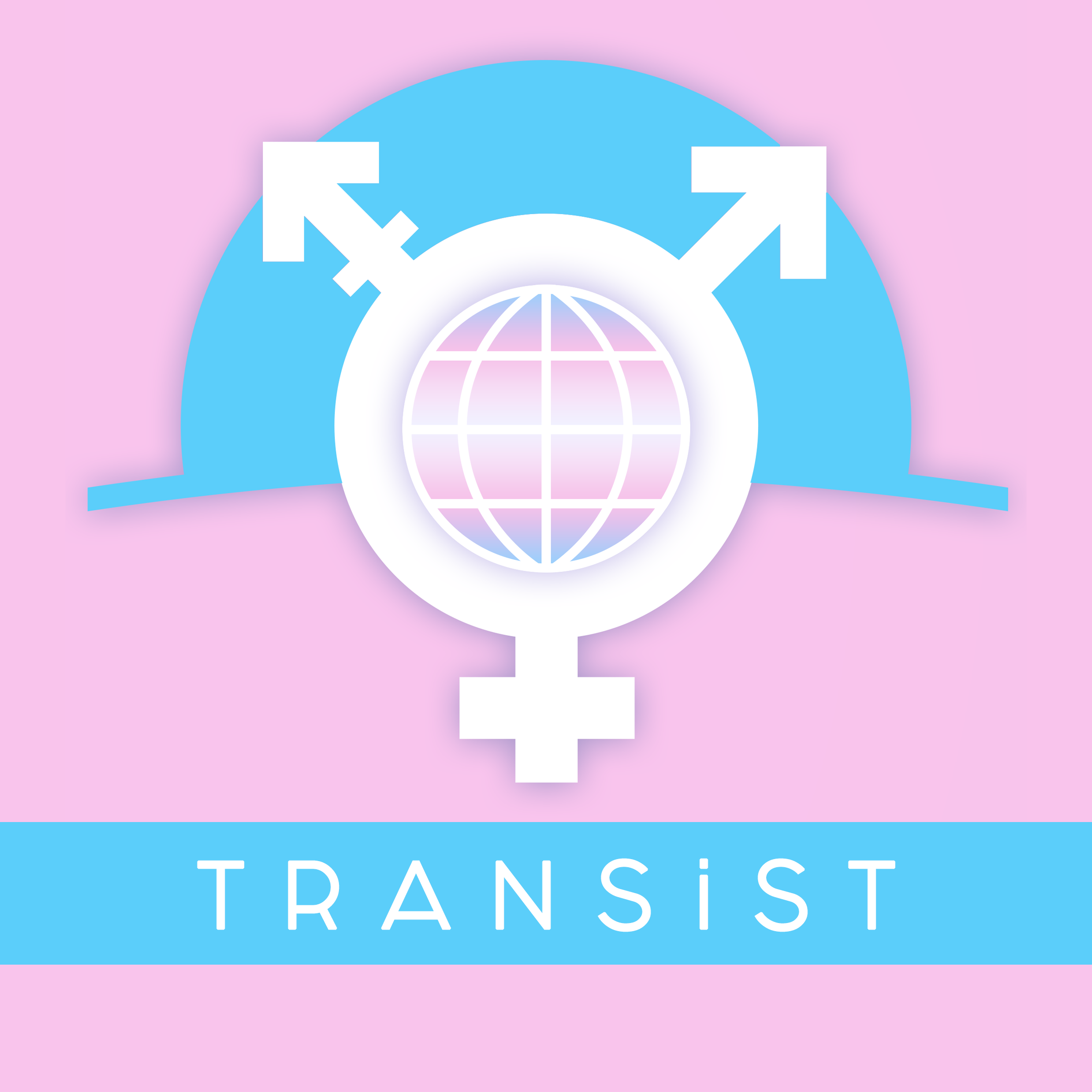 Trans İstanbul İnisiyatifi  (TRANSİST)